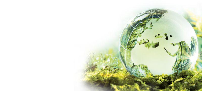 media/image/Nachhaltigkeit.jpg